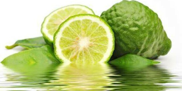 The Magic Fruit Kaffir Lime
